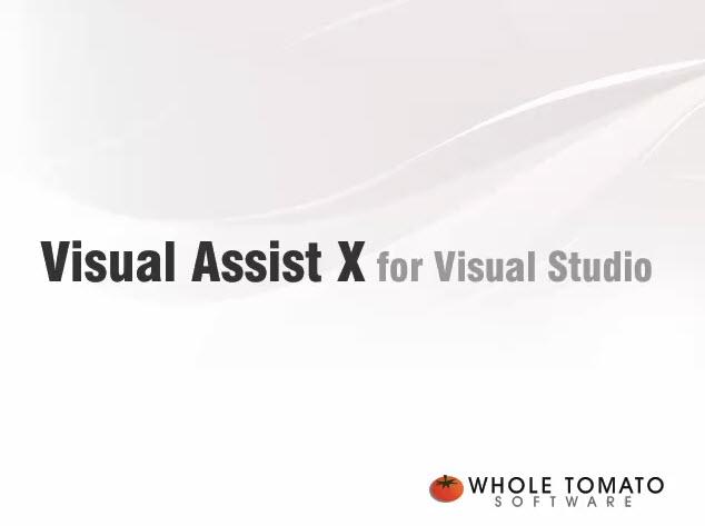 visual assist x 破解