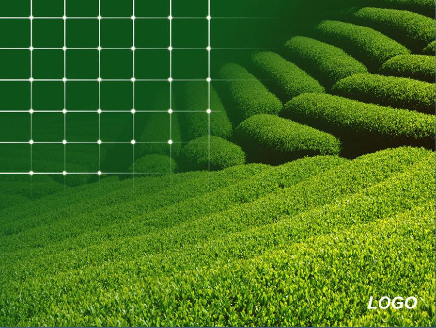 绿色自然风景精美ppt模板 3篇