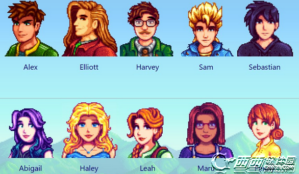 how to change appearance stardew valley