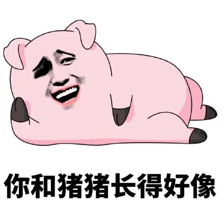 不关猪猪的事qq表情|不关猪猪的事表情包 高清版图片