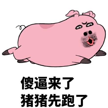 高清版  不关猪猪的事表情包一组非常可爱的猪猪的表情包,个人觉得这图片