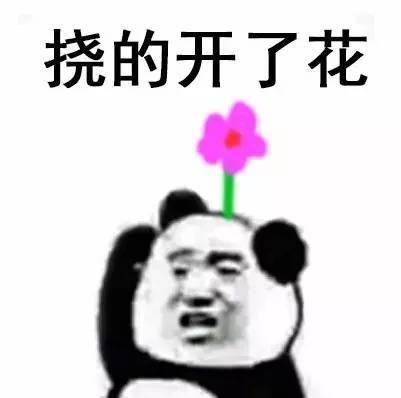 熊猫人挠头表情包无水印 【合集】